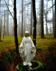 10-Our Lady of the forest