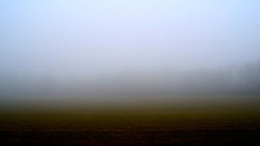 6-Foggy field